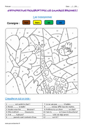 Homophones – Cm1 – Coloriage magique
