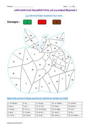 Lettre finale muette d'un mot - Cm2 - Coloriage magique