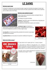 Qu'est ce que le sang – Exercices – Cm2 – Sciences – Cycle 3