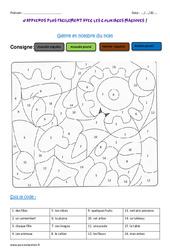Genre et nombre du nom - Ce2 - Coloriage magique