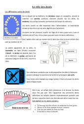 Le rôle des dents - Exercices - Ce2 - Sciences - Cycle 3