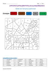 Verbes du 1er groupe au passé simple – Cm1 – Coloriage magique