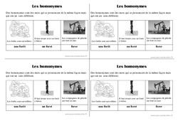 Homonymes - Ce1 - Leçon