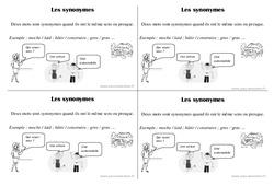 Synonymes - Ce1 - Vocabulaire - Leçon