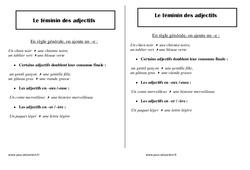 Féminin des adjectifs – Ce1 – Leçon