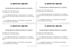 Pluriel des adjectifs – Ce1 – Leçon