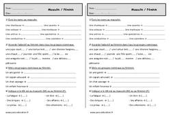 Masculin - Féminin - Ce1- Exercices - Grammaire