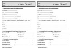 Singulier et pluriel - Ce1 - Exercices sur le groupe nominal