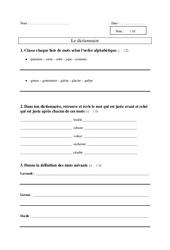 Dictionnaire – Ce1 – Evaluation – Vocabulaire