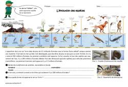 Evolution des espèces –  Cm1 – Cm2 – Exercices