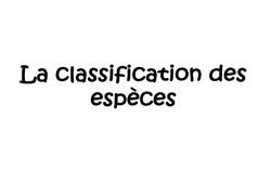 Classification des espèces, du vivant, les animaux – Cm1 – Cm2 – Exercices