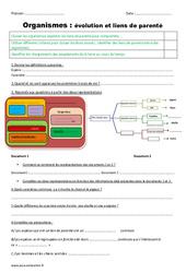 Organismes – Liens de parenté et évolution – Cm1 – Cm2 – Evaluation