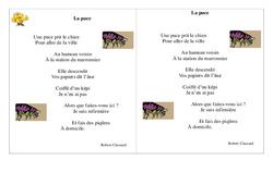 Poésie animaux - ce1 - : La puce – Cycle 2 - Français