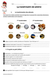 Transformation des aliments - Cm1 - Cm2 - Exercices