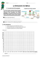 Développement des végétaux - Cm1 - Cm2 - Exercices