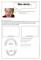 Mes dents  - Ce1 – Exercices  –  Corps humain – Sciences – Cycle 2