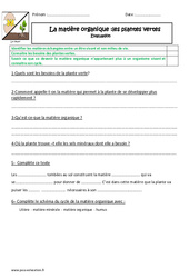 Matière organique – Plante verte – Cm1 – Cm2 – Evaluation