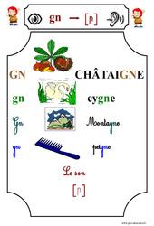 Le son [gn] – Cp – Etude des sons – Lecture – Cycle 2