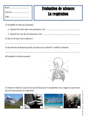 Respiration – Ce1 – Evaluation