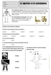 Squelette – Articulations – Ce1 – Corps Humain – Exercices – Découverte du monde – Cycle 2