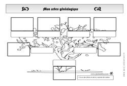 Arbre généalogique – Générations – Ce1 – Exercices – Espace temps – Cycle 2