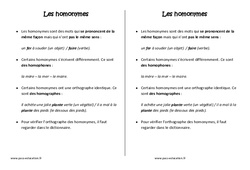 Homonymes - Cm1 - Leçon - Orthographe - Cycle 3