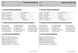 Adjectif qualificatif - Ce2 - Exercices Corrigés