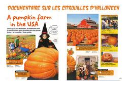 Citrouilles d'halloween - Texte documentaire - Ce1 - Ce2 - Cm1 - Cm2 - Lecture - Vie de la classe