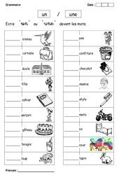 Un ou une – Cp – Exercices – Grammaire – Cycle 2