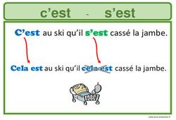 Homophones grammaticaux - Affiche pour la classe
