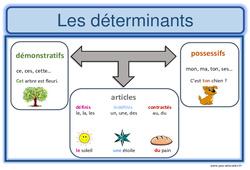 Déterminants – Cm1 – Affiche pour la classe