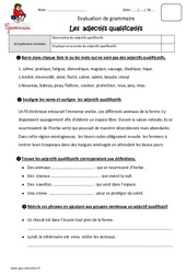 Adjectifs qualificatifs - Cm2 - Evaluation - Bilan