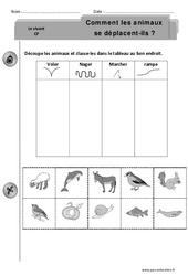 Comment les animaux se déplacent-ils – Cp – Exercices – Découverte du monde – Cycle 2