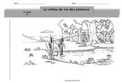 Milieu de vie des animaux – Cp – Exercices -– Découverte du monde – Cycle 2