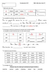Méli-mélo des mots – Ce1 – Vocabulaire ludique – Cycle 2 – Editeur Helicob