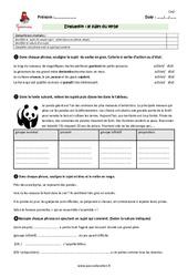 Sujet du verbe – Cm2 – Evaluation – Bilan
