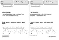 Droites - Segments – Ce1 – Exercices corrigés – Géométrie – Cycle 2