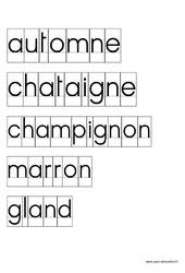 Fichier de mots pour activité imprimerie par thème – Ecriture – Maternelle – Petite section – Moyenne section – Cycle 1