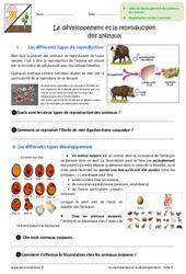 Développement et reproduction des animaux - 6ème - Exercices