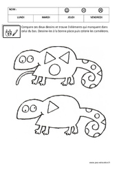 Dessins – Maternelle – Logique – Petite section – Moyenne section – Cycle 1