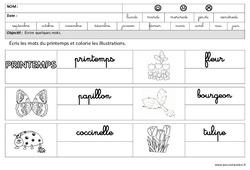 Printemps - Ecrire des mots en cursive -  Maternelle – Grande section – GS – Cycle 2