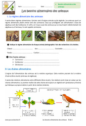 Besoins alimentaires des animaux – 6ème – Exercices