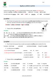 Radical, préfixe, suffixe - Cm2 - Leçon