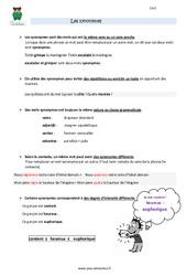 Synonymes - Cm2 - Leçon