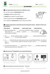 Homonymes - Cm1 - Exercices
