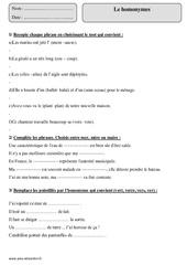 Homonymes – Cm1 – Exercices corrigés – Vocabulaire – Cycle 3