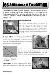 Les animaux à l'automne – Texte documentaire – Automne – Ce2 – Cm1 – Cm2 – Cycle 3