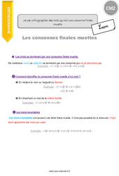 Comment orthographier des mots qui ont une consonne finale muette - CM2 - Leçon