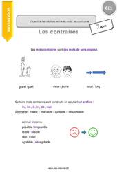 J'identifie les relations entre les mots les contraires - CE1 - Leçon