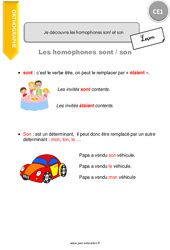 Je découvre les homophones sont et son – CE1 – Leçon